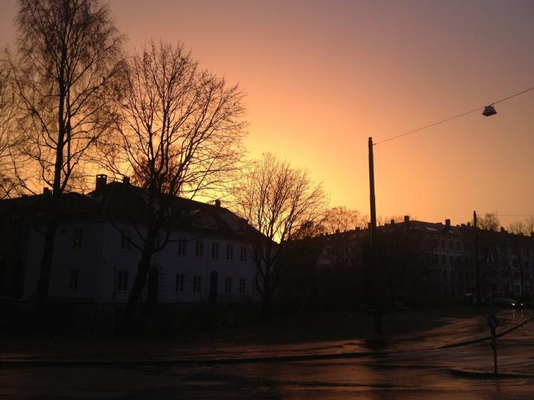 20121111-160713.jpg