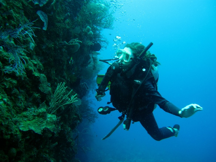 Utila Dive 23-5-11 073