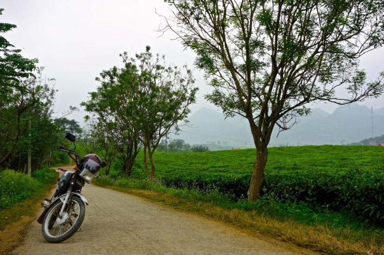 Mattis bike vid sidan av tefälten