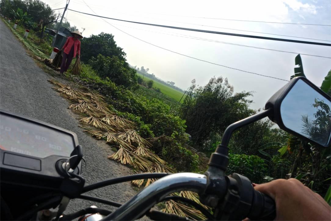 På motorcykel genom Mekongdeltat. Gashanden behöver inte driva så hårt för det är mycket spännande som händer längs vägarna.