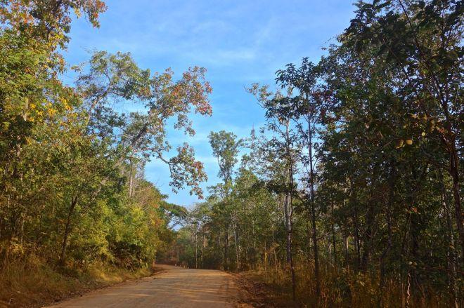 Vietnam ... eller? När denna väg blev ännu lite mer avskild fick vi inte köra längre. Tillbaka till trafiken.