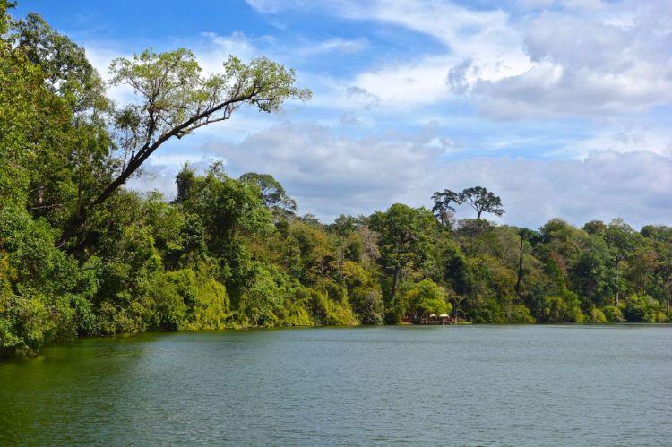 Vackert invid sjön