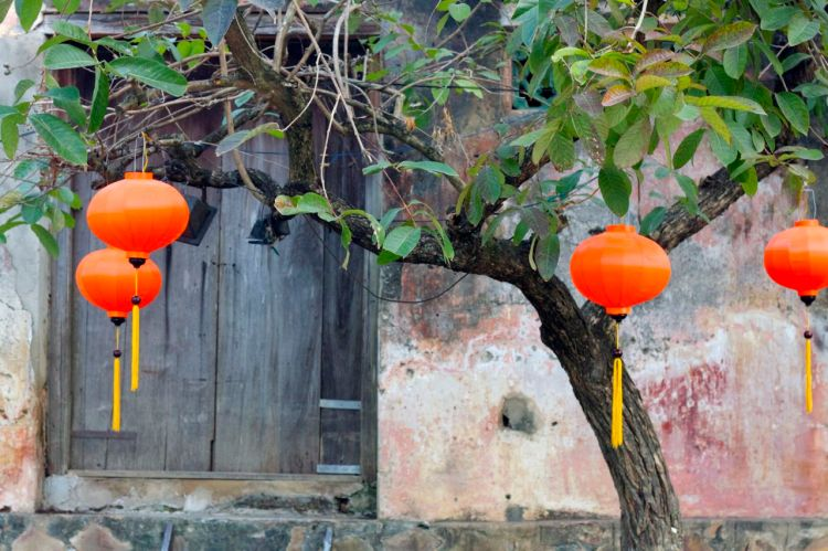 I alla träden längs med floden hänger lanternor. Vid fullmåne är det full fest i Hoi An. Det upplever vi på tisdag!