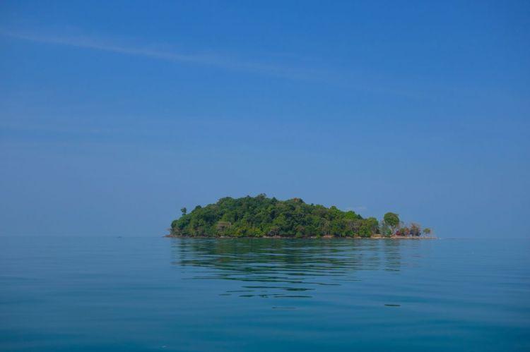 I havet är en ö. Runt ön finns det korallrev och småfisk och eremitkräftor och sjögurkor och sjöborrar.