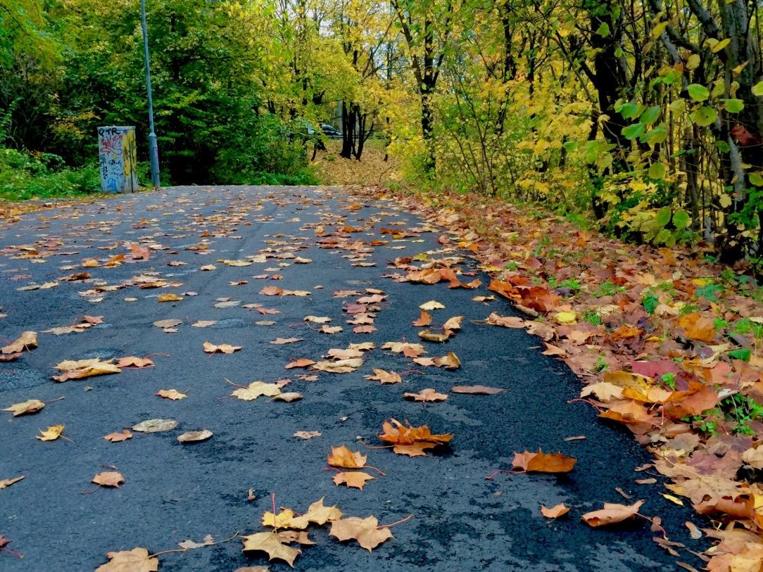 Snart är det mer löv på backen än i träden.