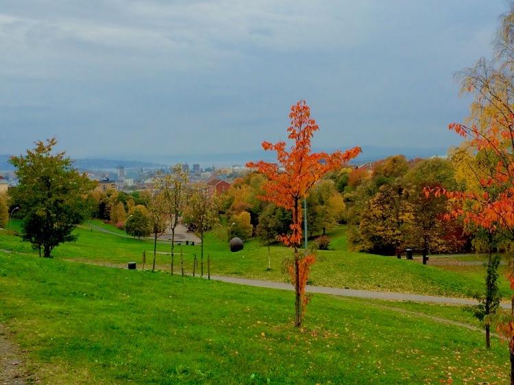 Vi har Torshovsdalen precis runt hörnet. På toppen av Oslo, typ.