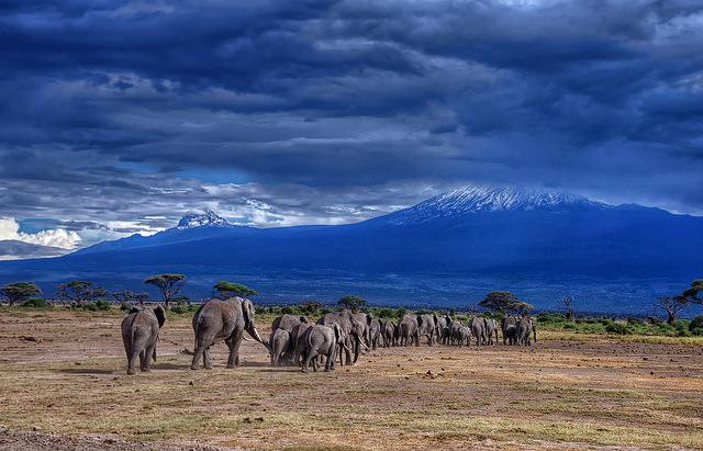 ... Tanzania. Bägge bilderna är hämtade från personer som gett sitt medgivande på https://www.flickr.com.