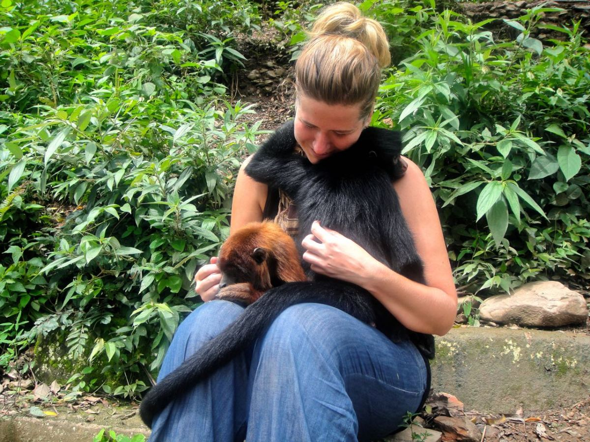 Kom nära inpå djurlivet i Sydamerika