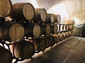 I vinkällaren var det ganska tomt, för frosten tog stora delar av säsongens skörd.